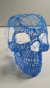 blueskull-20150119_215609